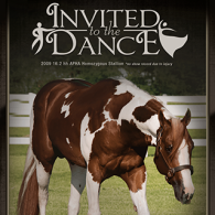 Invited to the Dance